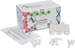 bacterial dna_isolation_kit-AV1003